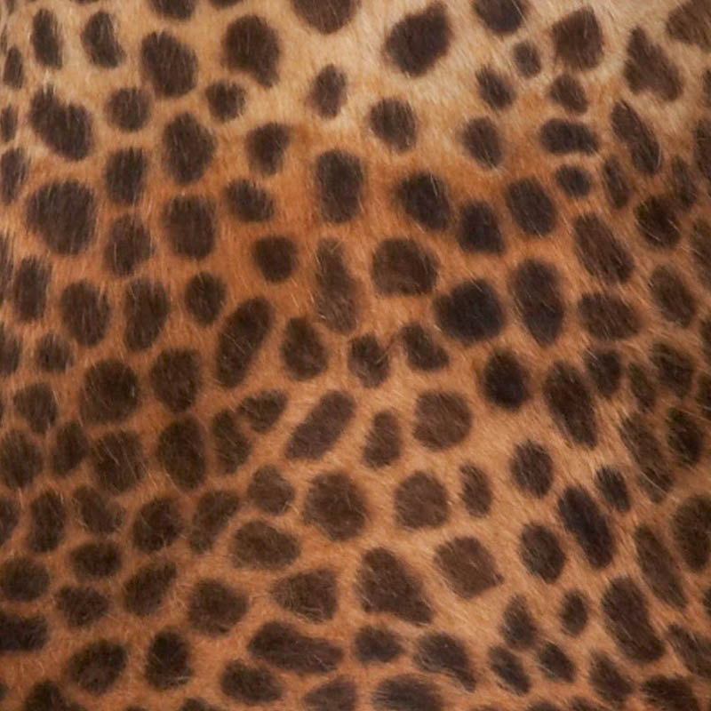 Camel with dark brown/black spots, no ombre effect. 15/16 diameter.