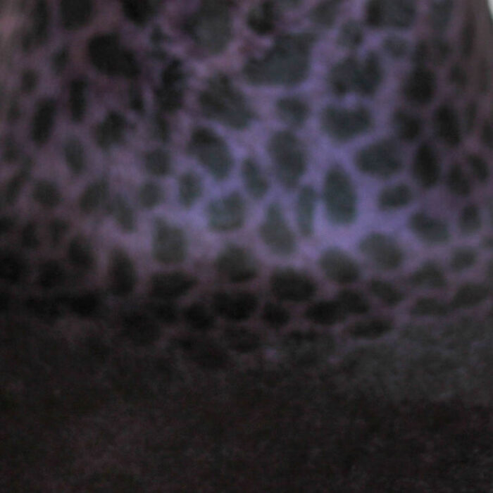 Shading from purple to black with black spots, 15/16 diameter.